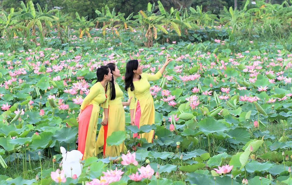 pic/news/my-nghiep636597288261814613.jpg